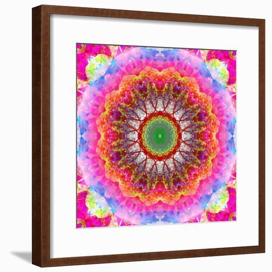 Mandala Ornament of Flowers, Composing-Alaya Gadeh-Framed Photographic Print