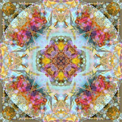 Mandala, Symmetrical Arrangement of Natural Materials-Alaya Gadeh-Photographic Print
