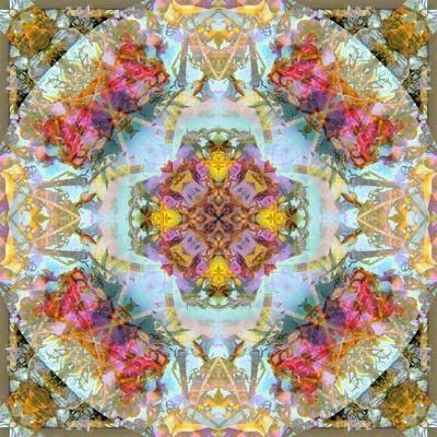 https://imgc.artprintimages.com/img/print/mandala-symmetrical-arrangement-of-natural-materials_u-l-q11z4rf0.jpg?p=0