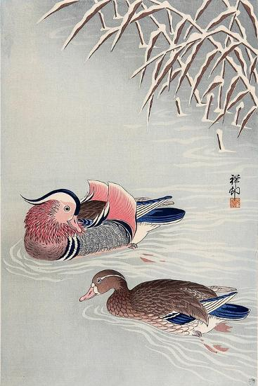 Mandarin Ducks in Snow-Koson Ohara-Giclee Print