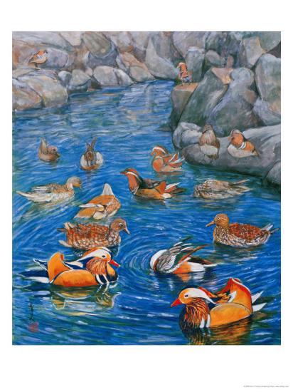 Mandarin Ducks-Komi Chen-Premium Giclee Print