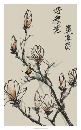 https://imgc.artprintimages.com/img/print/mandarin-magnolia-i_u-l-f8u8vk0.jpg?p=0