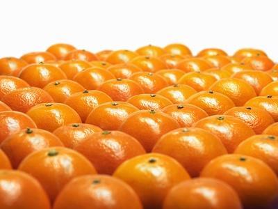 https://imgc.artprintimages.com/img/print/mandarin-oranges-in-rows_u-l-q10sewi0.jpg?p=0