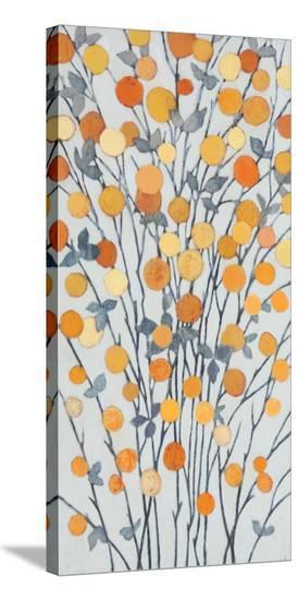 Mandarins III-Sally Bennett Baxley-Stretched Canvas Print