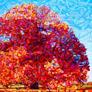 Buddha Tree by Mandy Budan