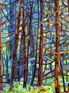 In a Pine Forest by Mandy Budan