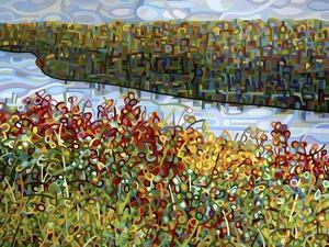 The River by Mandy Budan
