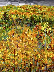 Towards Autumn by Mandy Budan