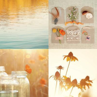 Nature's Elements