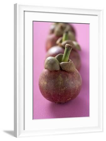 Mangosteens in a Row-Foodcollection-Framed Photographic Print