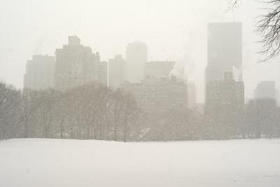 https://imgc.artprintimages.com/img/print/manhattan-buildings-and-trees-in-central-park-during-a-blizzard_u-l-polo8h0.jpg?p=0
