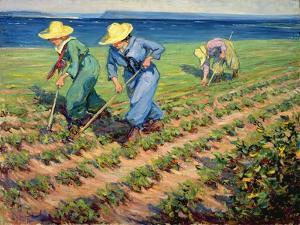 Land Girls Hoeing, c.1919 by Manly Edward Macdonald
