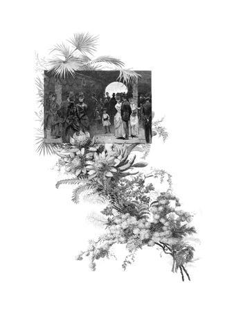 Manly Wild Flower Show, Sydney, New South Wales, Australia, 1886--Giclee Print