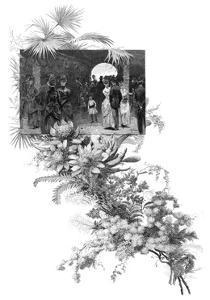 Manly Wild Flower Show, Sydney, New South Wales, Australia, 1886