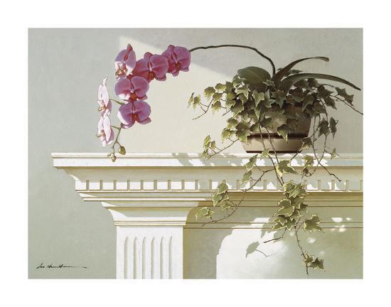 Mantelpiece Orchid-Zhen-Huan Lu-Art Print