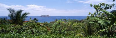 Manuel Antonia National Park Nr Quepos Costa Rica--Photographic Print