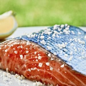 Salmon with Salt by Manuel Krug