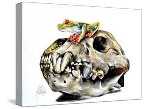 Frog On Skull by Manuela Lai