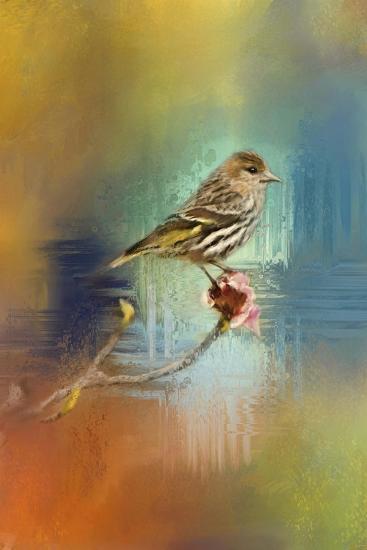 Many Colors-Jai Johnson-Giclee Print