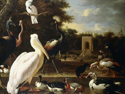 Many Different Types of Birds at a Pool in a Park-Melchior de Hondecoeter-Giclee Print