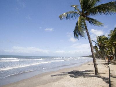 https://imgc.artprintimages.com/img/print/manzanilla-beach-trinidad-caribbean_u-l-pxq51n0.jpg?p=0