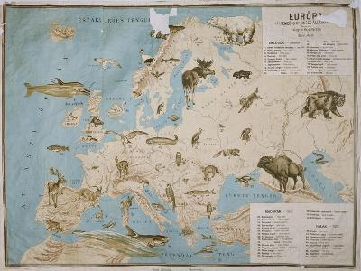 Map of Animals in Europe-Janos Balint-Giclee Print