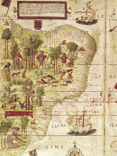 Map of Brazil, from Miller Atlas by Pedro and Jorge Reinel, Lopo Homen--Giclee Print