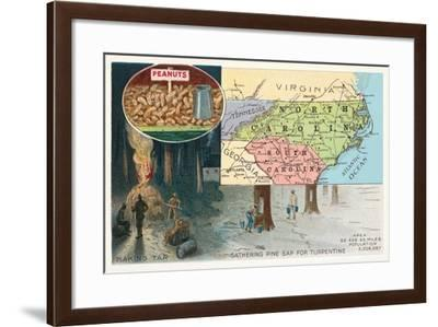 Map of Carolinas--Framed Art Print