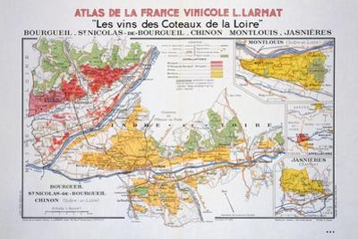 Map of the Loire Region: Bourgueil