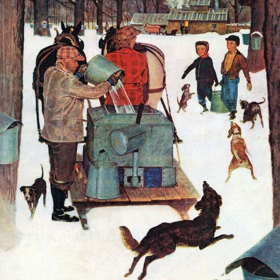 """""""Maple Syrup Time in Vermont,"""" February 17, 1945-Mead Schaeffer-Giclee Print"""