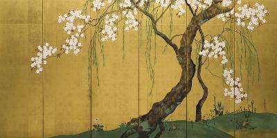 Maples and Cherry Trees-Sakai Hoitsu-Giclee Print
