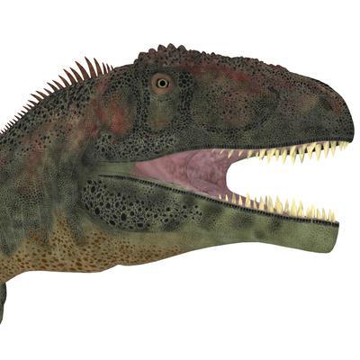 https://imgc.artprintimages.com/img/print/mapusaurus-dinosaur-head_u-l-pyb4k20.jpg?p=0