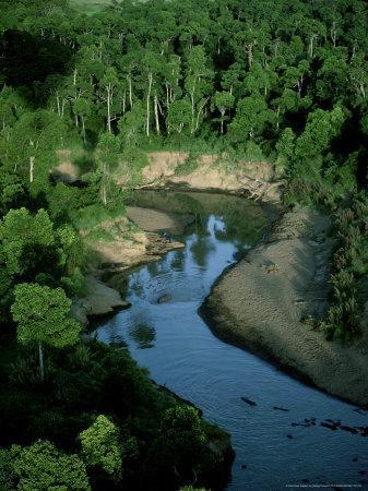 https://imgc.artprintimages.com/img/print/mara-river-kenya-east-africa_u-l-q10r11c0.jpg?p=0