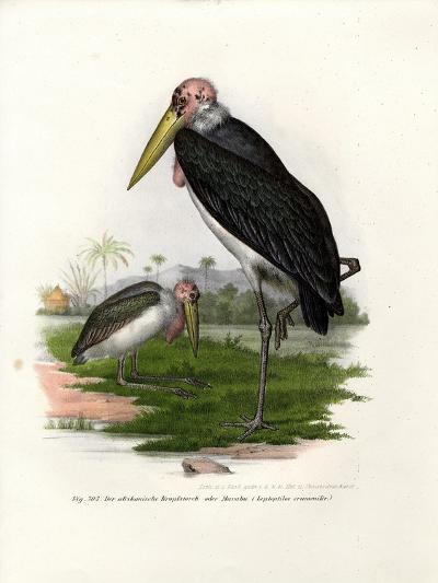Marabou, 1864--Giclee Print