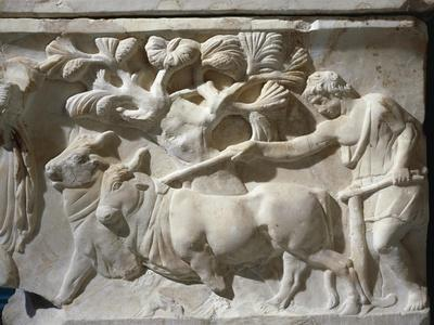 https://imgc.artprintimages.com/img/print/marble-sarcophagus-with-relief-depicting-legend-of-triptolemus-detail-of-field-ploughin_u-l-pro1lz0.jpg?p=0