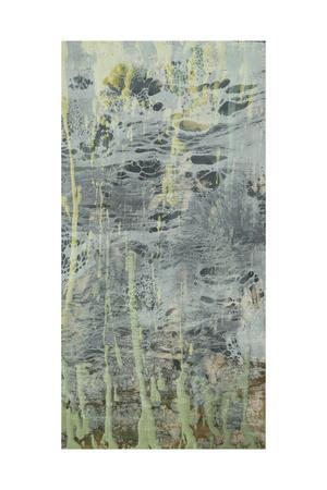https://imgc.artprintimages.com/img/print/marbled-plane-ii_u-l-pyvrhx0.jpg?p=0