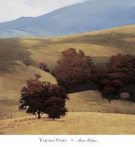 Yakima Oaks by Marc Bohne