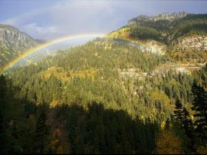 A Rainbow Arches Above an Evergreen Forest in the San Juan Mountains by Marc Moritsch