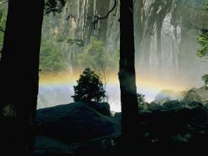 A Rainbow Rises Above the Mist in the Woods by Marc Moritsch