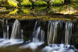 A Scenic View of Fern Spring Cascading over a Small Fall by Marc Moritsch