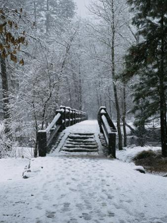 A Snow-Covered Footbridge over the Merced River