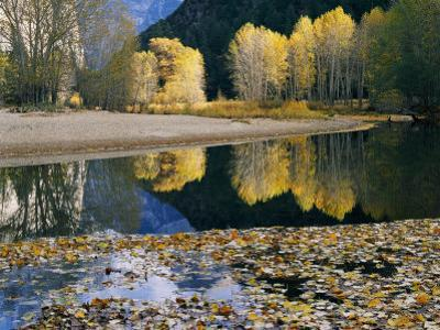 Autumn View Along the Merced River by Marc Moritsch