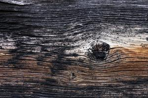Close Up Details of Weathered Old Barn Wood by Marc Moritsch
