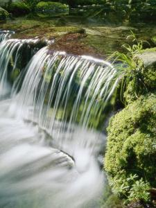 Close View of a Small Waterfall on Fern Creek by Marc Moritsch