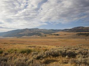 Hills and Vast Grasslands under a Cloud-Filled Sky in the Lamar Valley by Marc Moritsch