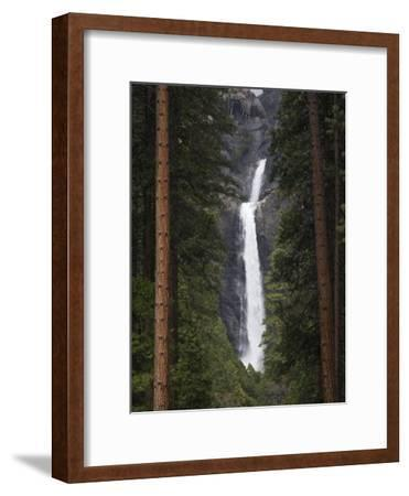 Scenic Lower Yosemite Fall Framed by Pine Trees