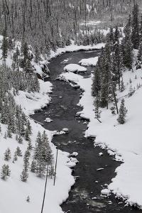 The Firehole River and Nearby Forest in a Snowy Winter Landscape by Marc Moritsch