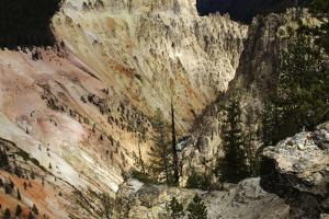 The Grand Canyon of the Yellowstone by Marc Moritsch