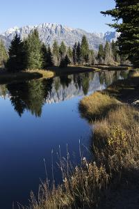 The Teton Range and Evergreen Forests, and their Reflections in the Snake River by Marc Moritsch