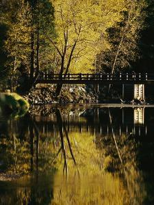 Trees and a Footbridge are Reflected in the Merced River by Marc Moritsch